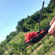 Brand vino e cibo