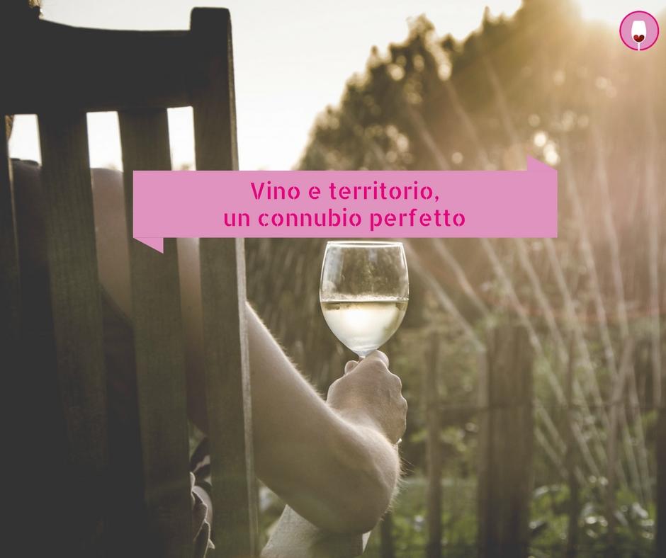 vino e territorio promozione digitale