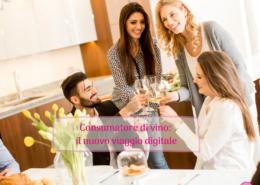 Viaggio del consumatore di vino Sorsi di Web