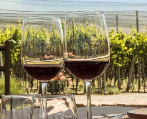 promozione del vino online